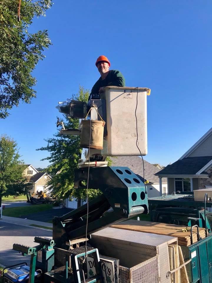 arborist in bucket truck